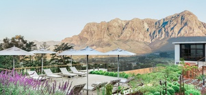 The  Winelands Escape You've Been Waiting For
