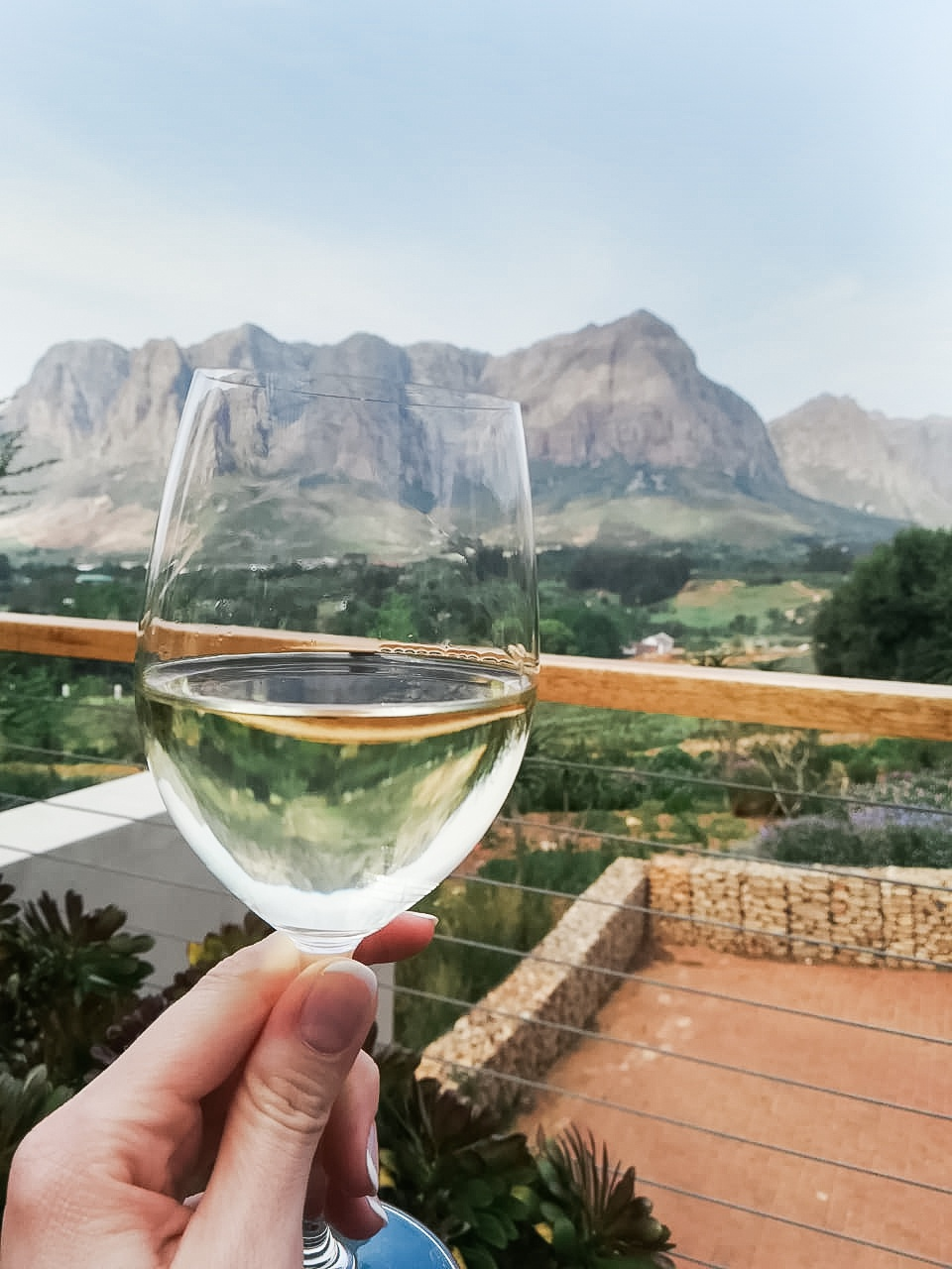 Glass of Chardonnay Limoenkloof wine being drunk at De Zeven Guest Lodge in Capewinelands